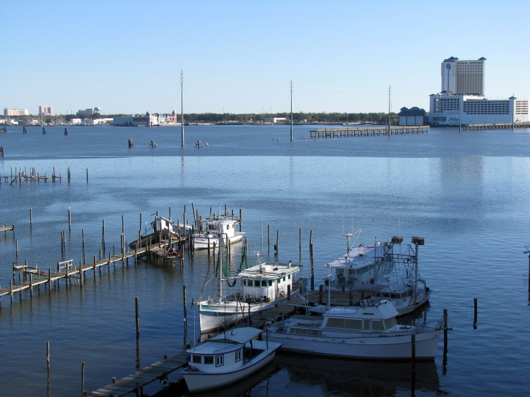 Back Bay piers, from the I-110 bridge