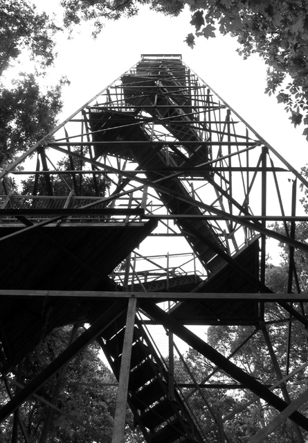 Observation tower - Perry Lakes, Alabama.